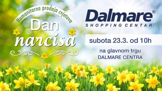 Kupite cvjetove u Dalmare centru i pridonesite borbi protiv raka dojke
